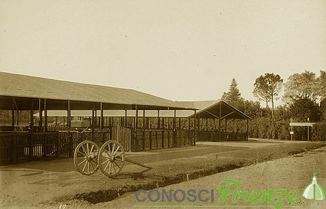 Esposizione italiana del 1861 alcuni recinti delle mandrie bovine
