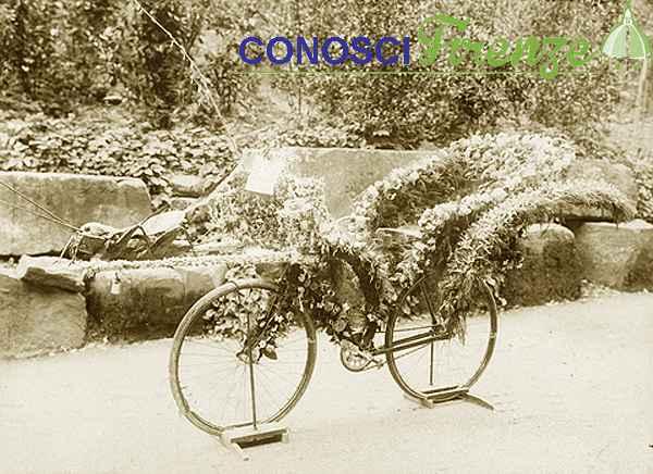 Bicicletta floreale per il primo premio della gara alla festa del Grillo